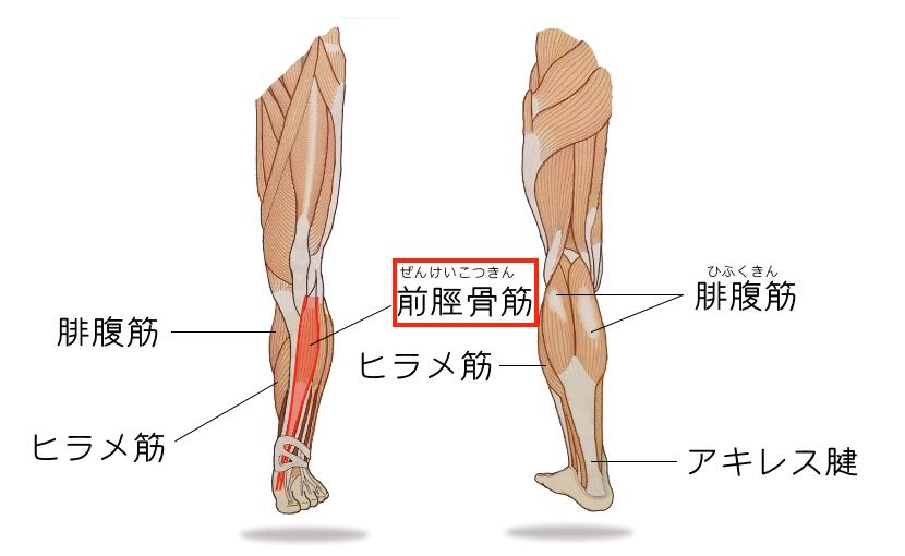 足首 の 痛み